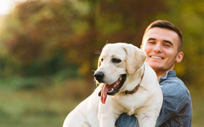 HOW TO CONTROL FOOD BOLTING IN DOGS